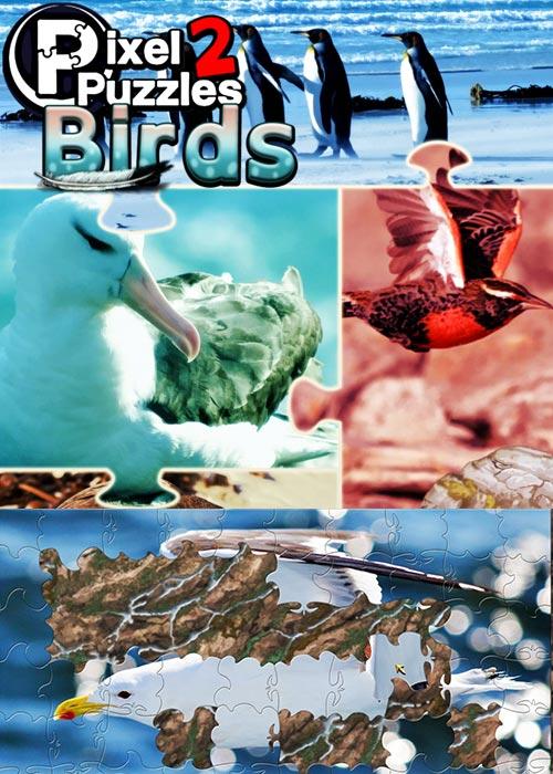 PIXEL PUZZLES 2 BIRDS Steam CD Key